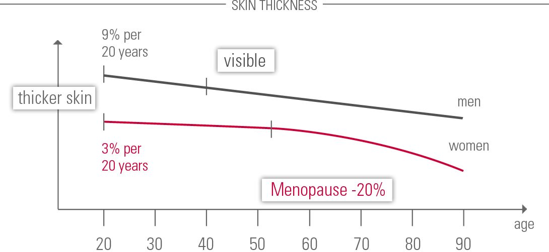 Eucerin: About skin   The difference between male and female skin