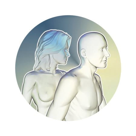 Illustration of male and female body