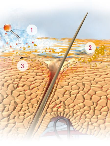 Can Food Allergies Cause Itchy Scalp